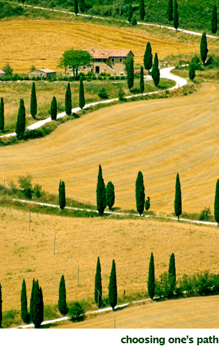 Choosing Ones Path - GailMencini.com